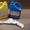 Жидкий пластик холодного отверждения двухкомпонентный  #1137583
