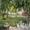 0тдых у Черного моря 0десса Кар0лино -Бугаз Роза ветров - Изображение #4, Объявление #1625069
