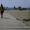 0тдых у Черного моря 0десса Кар0лино -Бугаз Роза ветров - Изображение #7, Объявление #1625069