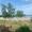 Великолепный участок в Одессе 10 соток под дом первая линия от моря. Госакт #1685284