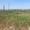 Продам Одесса участок 7, 9 га Ж/Д ветка,  склады 3500 м,  1700 кВт,  краны #1688300