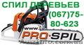 Услуги аренда автовышки и спил аварийных сухих деревьев в городе Одесса и на дач