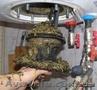 Чистка-ремонт бойлера в Одессе.
