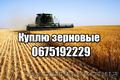 пшеница,  соя,  рапс,  кукуруза,  ячмень,  подсолнечник