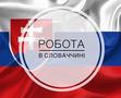 Работа за границей по специальности и без опыта работы. Без предоплаты в Украине